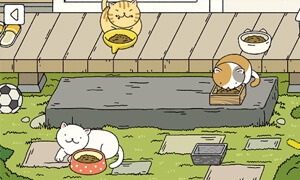cach choi game adorable home